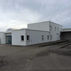 Vente Entrepôt Béligneux 1000 m²