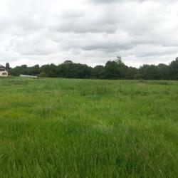 Terrain  de 1200 m²  Grandcourt  (76660)