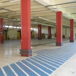 Location Local d'activités Perpignan 4954 m²