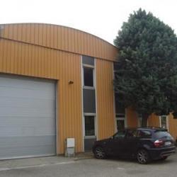 Location Local d'activités Dardilly 895 m²