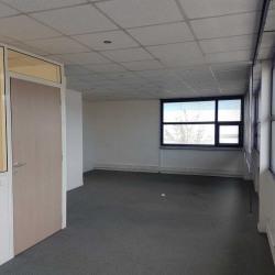 Location Local d'activités Sainte-Geneviève-des-Bois 492,12 m²