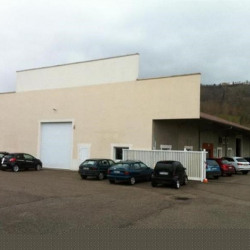 Vente Local d'activités Cessieu 1000 m²