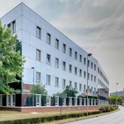 Location Bureau Guyancourt 92 m²