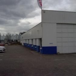 Location Entrepôt Montluçon 900 m²