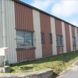 Location Entrepôt Carpiquet 1300 m²