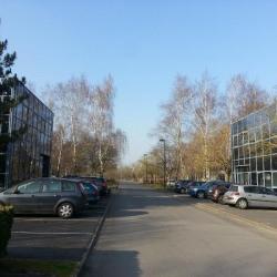 Location Local d'activités Saclay 146 m²