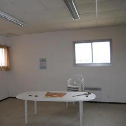 Location Bureau Castelnau-le-Lez 130 m²