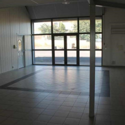 Location Local commercial Le Crès 380 m²