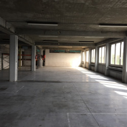 Vente Entrepôt Le Blanc-Mesnil 11200 m²
