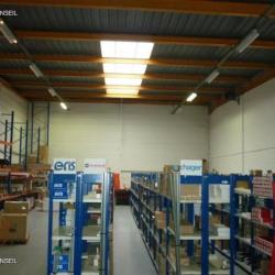 Location Local d'activités Wissous 523 m²