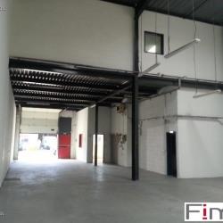 Location Local d'activités Massy 300 m²