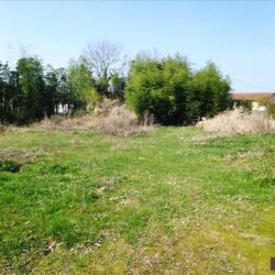 Vente Terrain Fareins 800 m²
