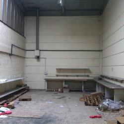 Location Local d'activités Noisy-le-Grand 341 m²