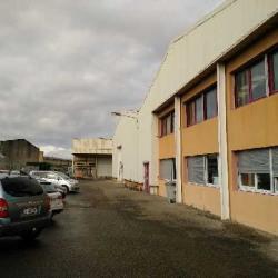 Location Local d'activités Chassieu 2250 m²