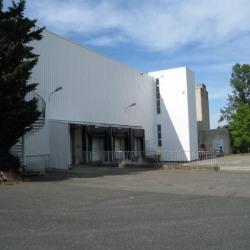Location Entrepôt Rillieux-la-Pape (69140)