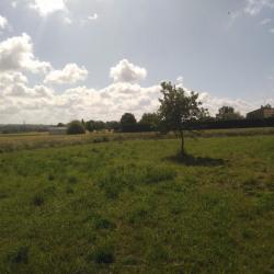 Terrain  de 1000 m²  Verfeil  (31590)