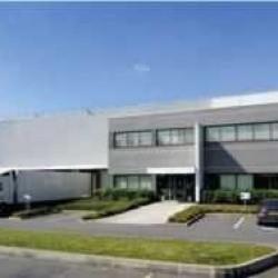 Location Local d'activités Compans 6940 m²