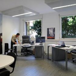 Location Bureau Lyon 3ème 14 m²