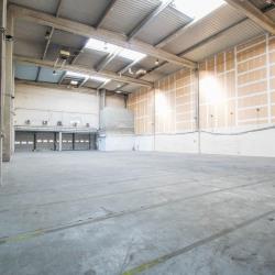 Location Local d'activités Saint-Ouen 1065 m²