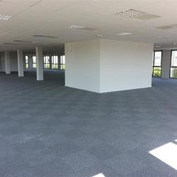 Location Bureau Serris 737 m²