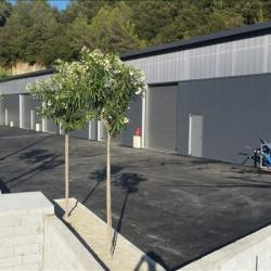 Location Entrepôt Nice 205 m²