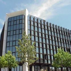 Location Bureau Marseille 8ème 189 m²