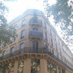 Location Bureau Paris 4ème 65 m²