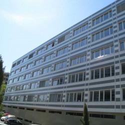 Location Bureau Toulouse 233 m²