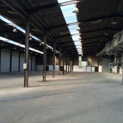 Location Local d'activités Ozoir-la-Ferrière 3486 m²