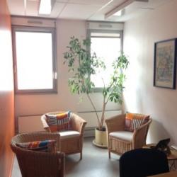Location Bureau Lyon 2ème 377 m²