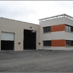 Vente Local d'activités Meyzieu 569 m²