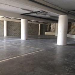 Vente Local d'activités Clermont-l'Hérault 700 m²