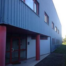 Vente Local d'activités Erstein 965 m²