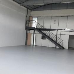 Location Entrepôt Neuville-sur-Saône 255 m²