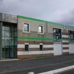 Location Bureau Villeneuve-d'Ascq 290 m²