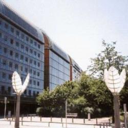 Location Bureau Lyon 6ème 791 m²