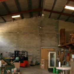 Location Local d'activités Lattes 750 m²