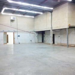 Location Local d'activités Croissy-Beaubourg 576 m²