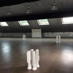 Location Entrepôt Saint-Maur-des-Fossés 536 m²