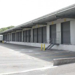 Vente Entrepôt Forges-les-Bains 4560 m²