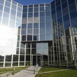 Location Bureau Pessac 258 m²