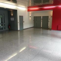 Location Bureau Lognes 50 m²