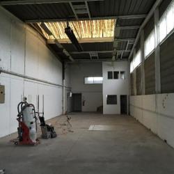 Location Local d'activités Saint-Gratien 255 m²