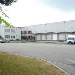 Location Entrepôt Strasbourg 3390 m²