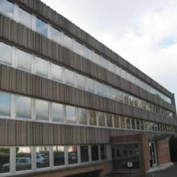 Location Bureau Neuville-en-Ferrain (59960)