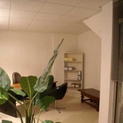 Location Bureau Nogent-sur-Marne 55 m²