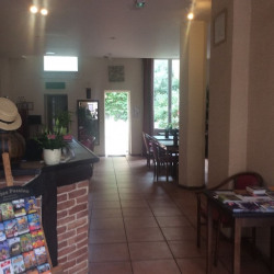 Vente Local commercial Bordeaux (33800)