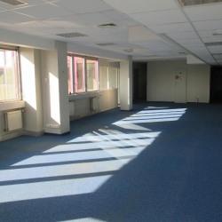 Vente Bureau Fontenay-sous-Bois 240 m²