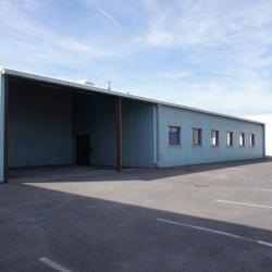 Location Local d'activités Châtenoy-le-Royal 170 m²