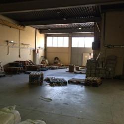 Location Local d'activités Montreuil 500 m²